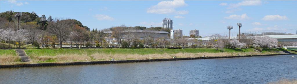 八千代市指定管理公園_八千代総合運動公園_メイン画像