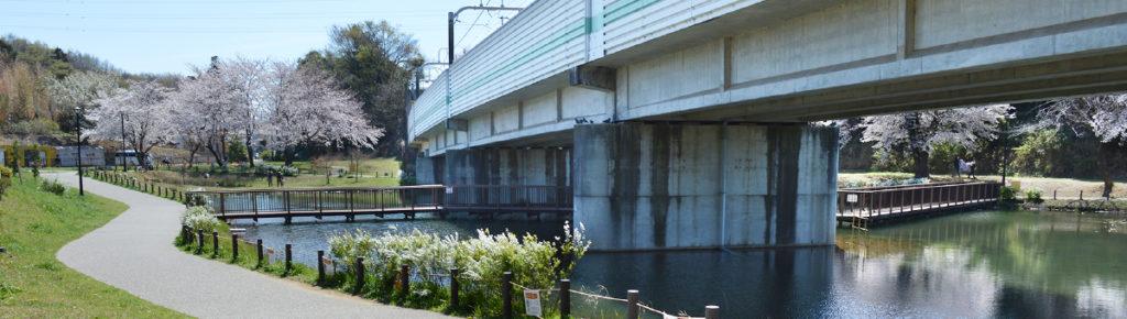 八千代市指定管理公園_黒沢池近隣公園_メイン画像