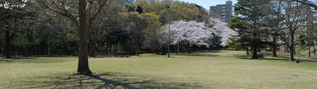 八千代市指定管理公園_村上中央公園_メイン画像