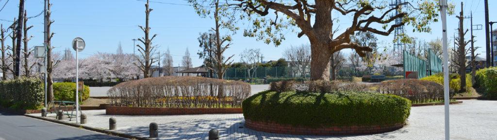 八千代市指定管理公園_スポーツの杜公園_メイン画像